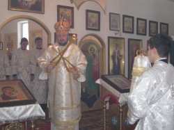 9 января епископ Добропольский Спиридон совершил литургию в Стефановском монастыре с. Степановка